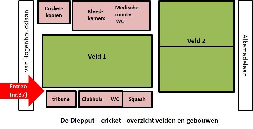 cricket: velden en gebouwen